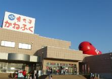 東京かねふく めんたいパーク大洗