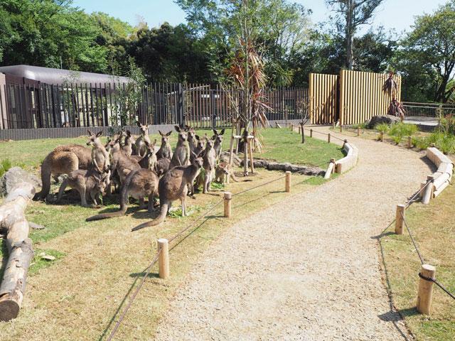 金沢 動物園